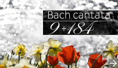 Bach cantata 9 and 184 Oct 6, 2013
