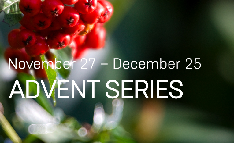 Sermon Series for Advent and Christmas